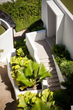 W Retreat Samui Landscape Design by P Landscape