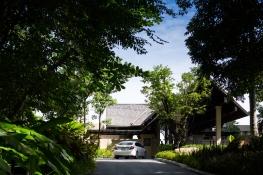 Vana Belle Samui landscape design by P Landscape