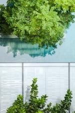 TEAL Landscape design by LAB