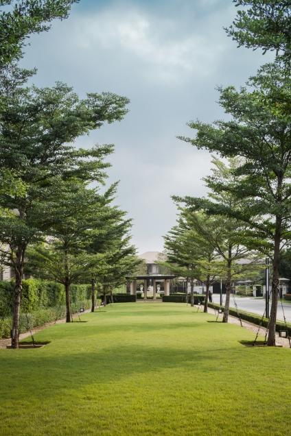 Narasiri Landscape Design by LAB