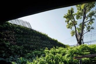 Central Chiang Mai Landscape Design by Shma