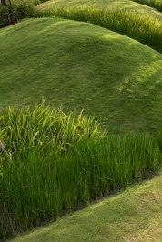 Burasiri Wacharapol • Landscape Architects » Sanitas Studio