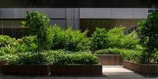 OUE Downtown Landscape Architects » Shma