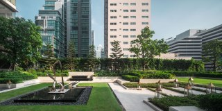 ESSE Asoke • Landscape Architects » Ixora Design